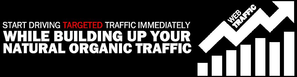 drive-organic-traffic